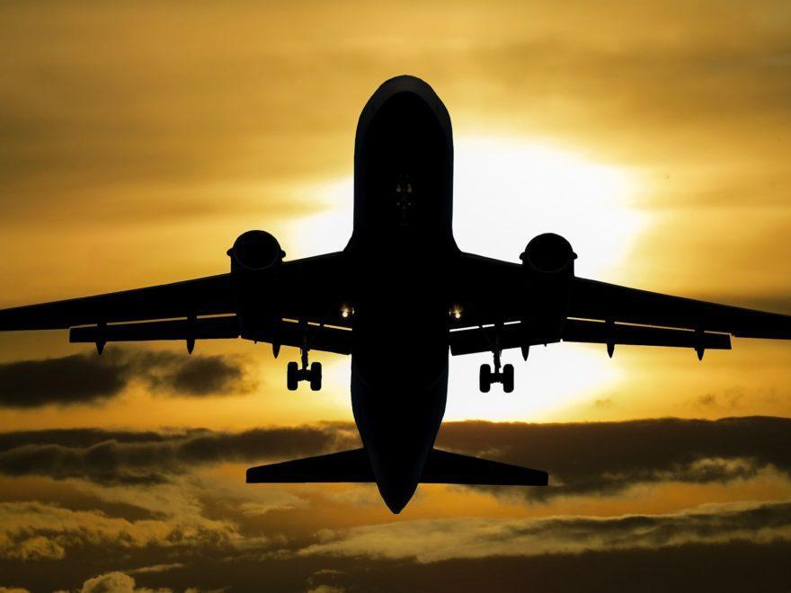 Vogelschlag - und die Flugverspätung