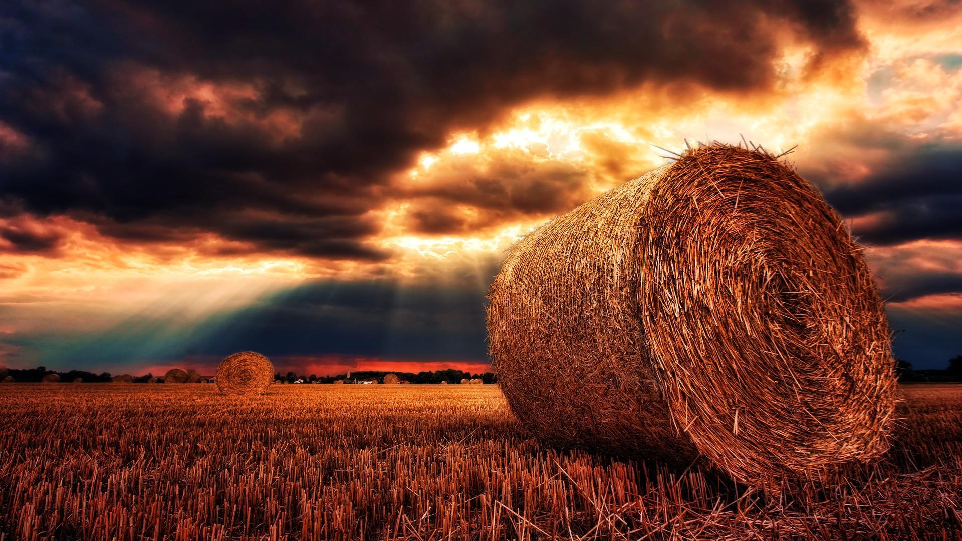 Bodenschutz - und die rückwirkende Sanierungspflicht