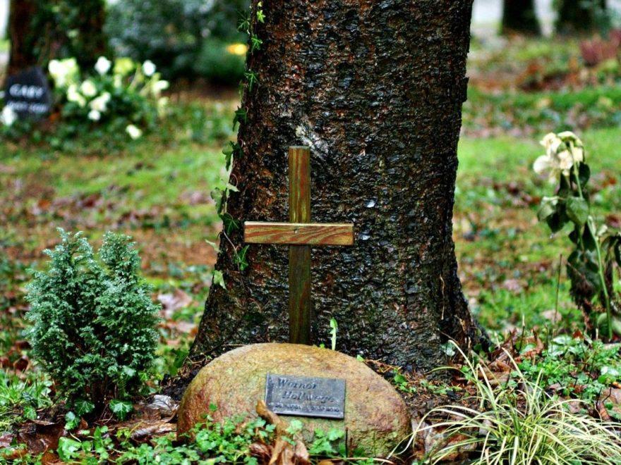 Die unberechtigte Grabpflege