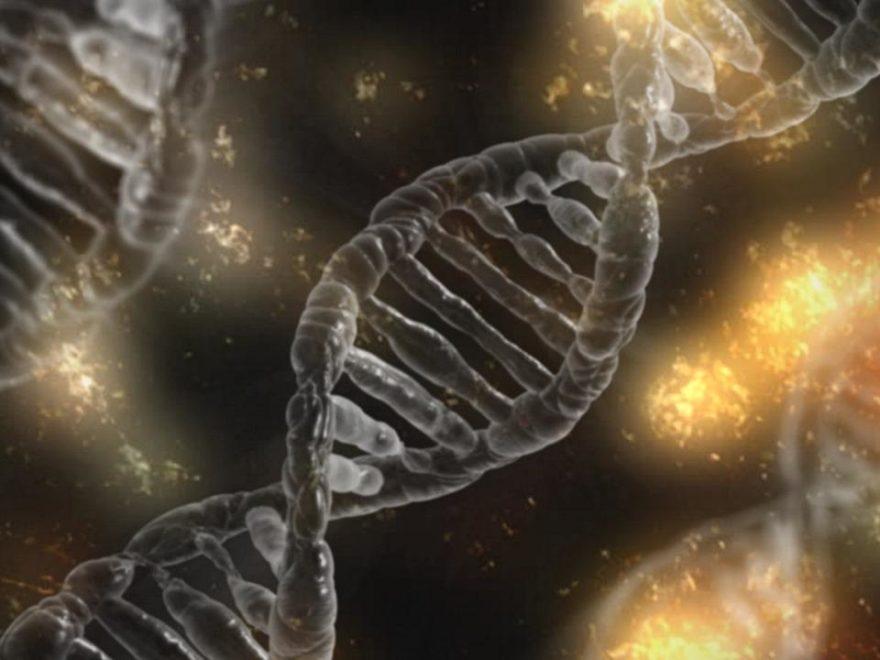 DNA-Gutachten – und ihre Darstellung in den Urteilsgründen