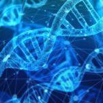 Statusneutrale Klärung der biologischen Abstammung - und die frühere Vaterschaftsfeststellung in Ungarn