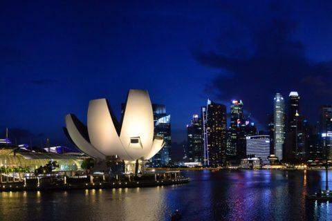 Das Freihandelsabkommen zwischen der Europäischen Union und Singapur vor dem Bundesverfassungsgericht