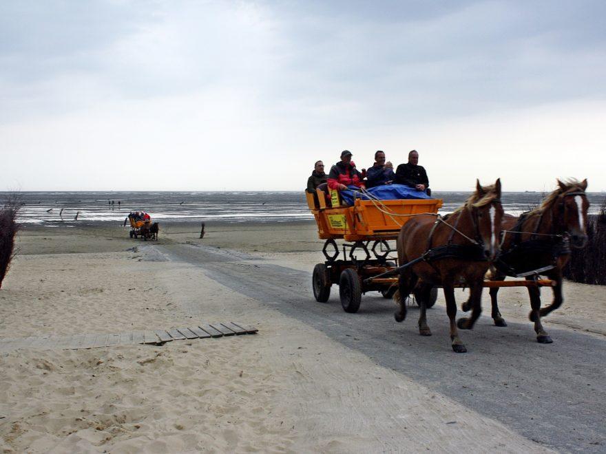 Die Pferdekutsche als Inseltaxi