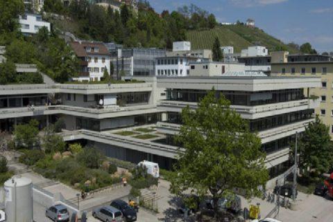 Duale Hochschule Baden-Württemberg - und ihre Leitungsorgane