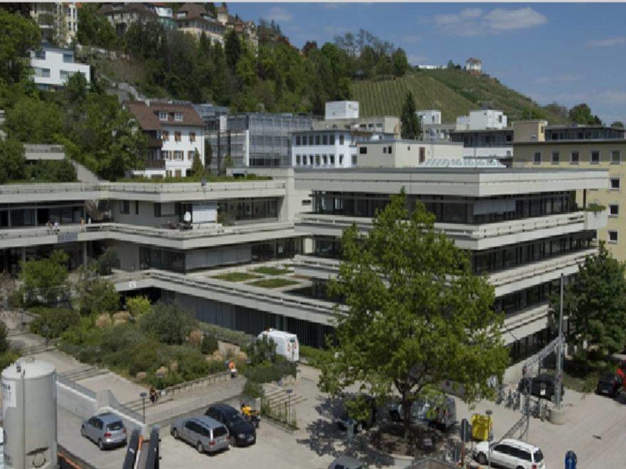 Duale Hochschule Baden-Württemberg – und ihre Leitungsorgane
