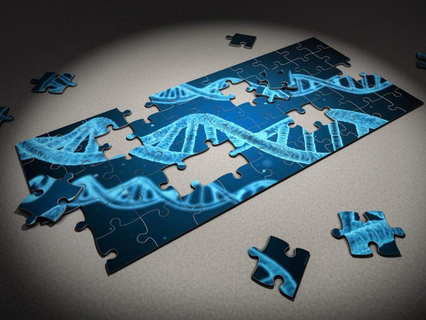 DNA-Mischspur - und die notwendigen Erörterungen in den Urteilsgründen
