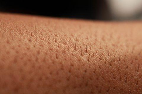 Haut mit Haaren