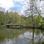 Die Veranstaltung im Naturschutzgebiet